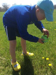 Wil watering flowers